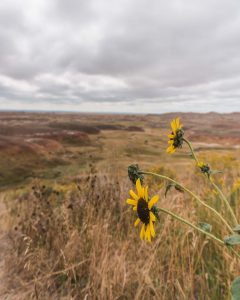 The best places to visit in South Dakota include Badlands National Park - don't miss the Yellow Mounds!