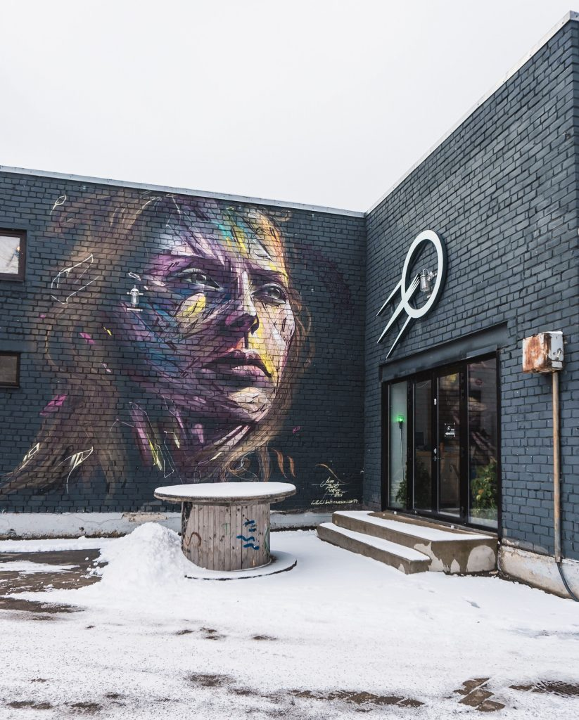 The Telliskivi district of Tallinn is the place to find the best street art in Estonia! Called the Telliskivi Creative City, you will also find independent shops, designers and more.