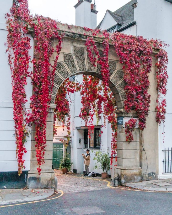 Don't miss a visit to beautiful Kynance Mews in London this autumn - it's one of the most instagram worthy places in London!