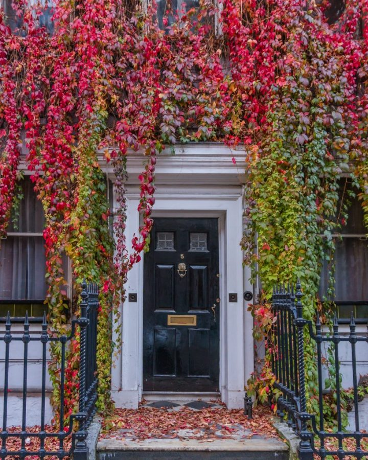 Wimpole Street is one of the most instagrammable places in London in autumn