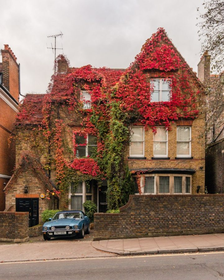 Don't miss a visit to Hampstead to see some of the most aesthetic spots in London in autumn