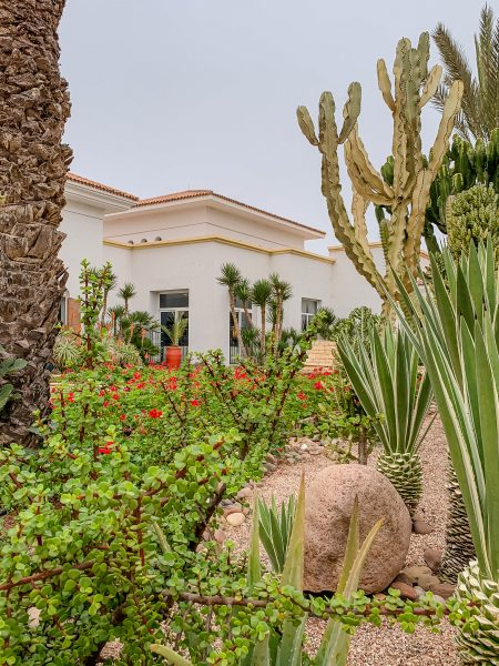 There is so much to do at ROBINSON Club Agadir Morocco! The grounds of the resort are beautiful, with cacti and plant filled areas and Moroccan style architecture.