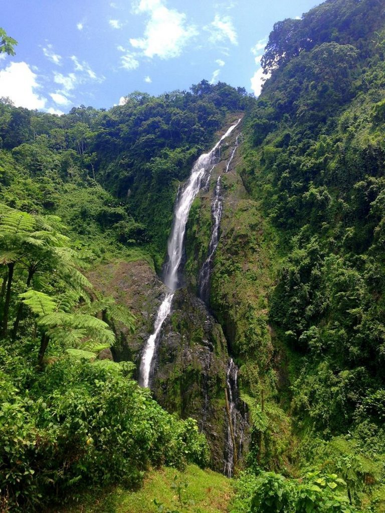 Salto de la Jalda is the highest waterfall in the Dominican Republic as well as the highest waterfall in the Caribbean!