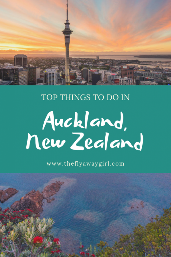 If you only have one day in Auckland, here is the perfect itinerary! Whether you want adrenaline, a great brunch, delicious cocktails or visits to a top wine region, there's lots to keep you occupied when visiting Auckland.