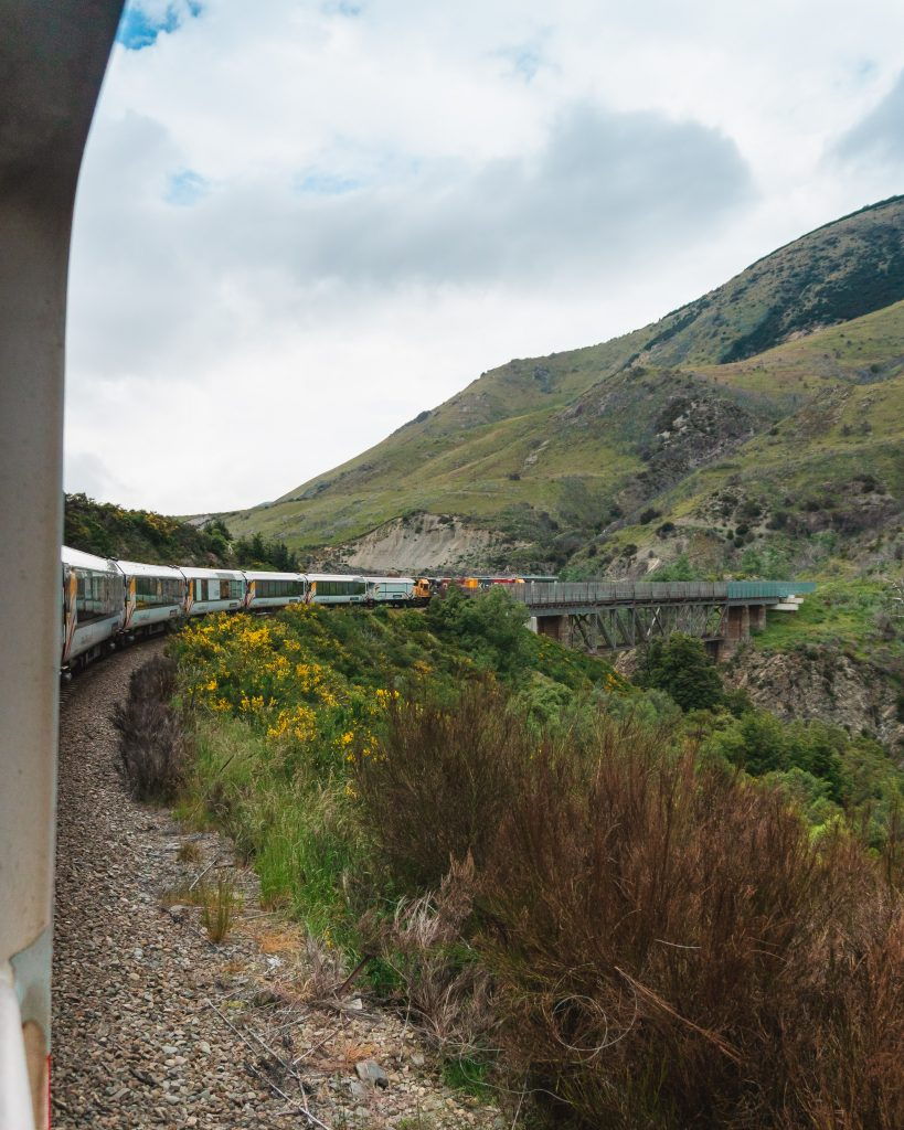 Don't miss a journey on one of the most scenic railways in the world, the TranzAlpine on New Zealand's South Island