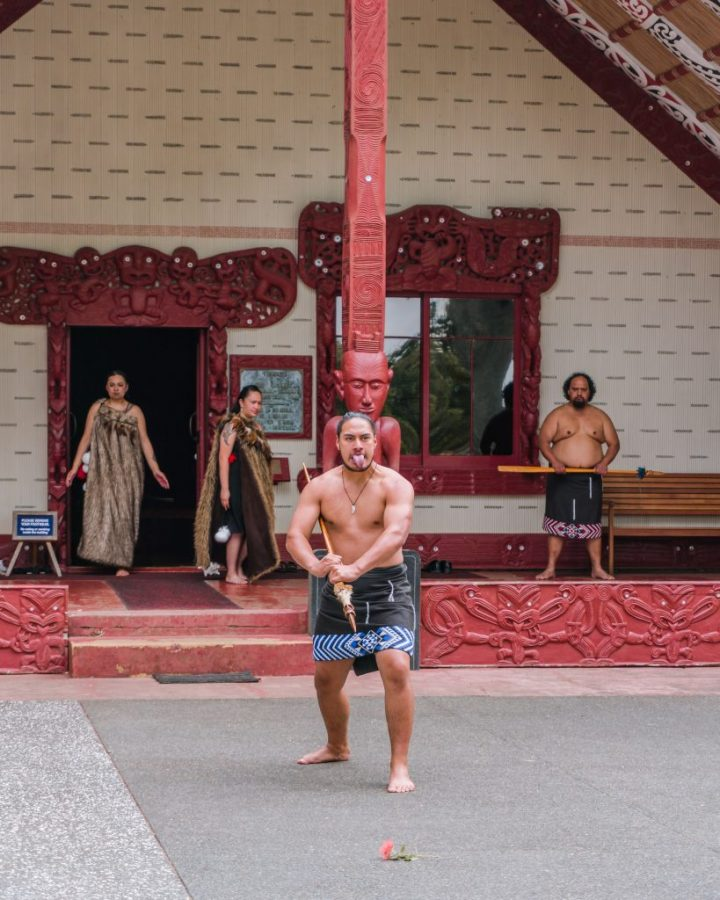 The Maori cultural performance is a must do when in Paihia