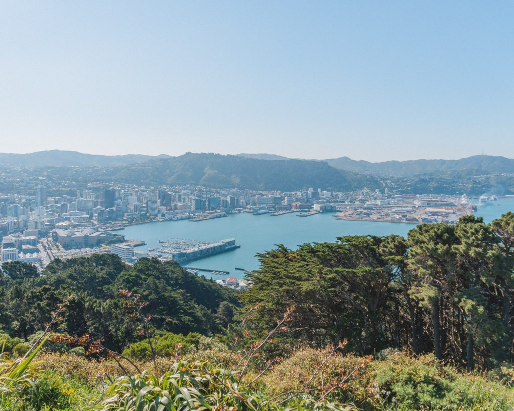 One of the top free things to do in Wellington is to walk to the Mount Victoria Lookout for stunning views over Wellington and the bay