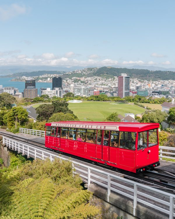 Don't forget to photograph the iconic red cable car when you visit the Wellington Botanic Garden!